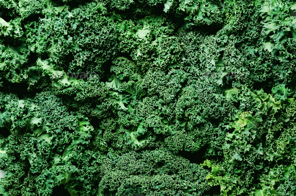Fresh organic green kale background, selective focus, top view, copy space. Green texture - Stock Photo - Images