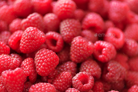 Ripe raspberries macro. Selective focus. Fruit background with copy space. Summer and berries - Stock Photo - Images