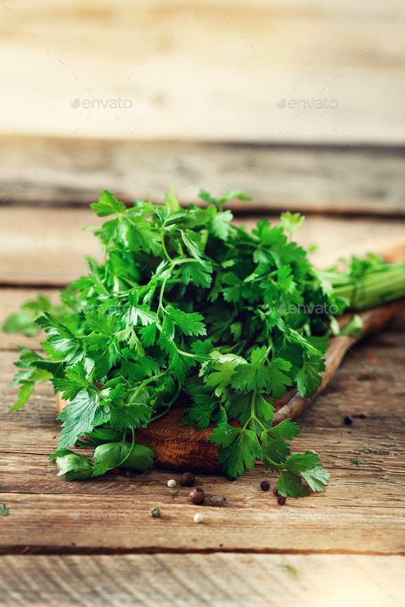 Bunch of fresh organic parsley on wooden background with copyspace, rustic and vintage style - Stock Photo - Images