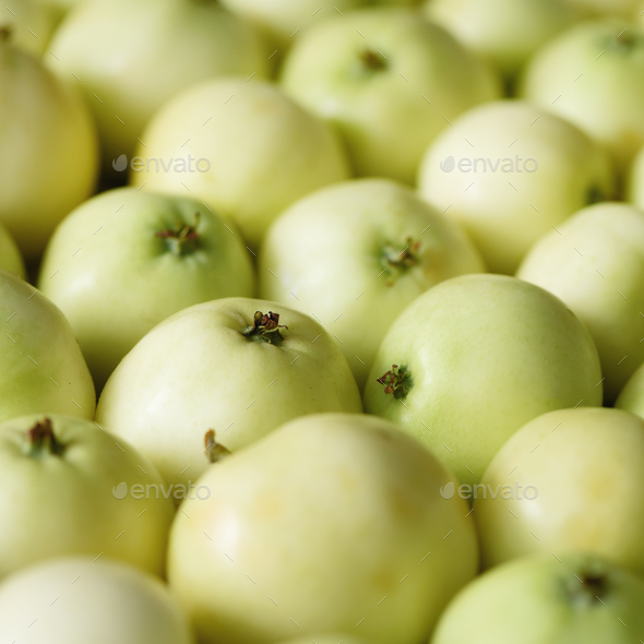 Top view of green apple. Background, concept, copy space, macro. Square - Stock Photo - Images