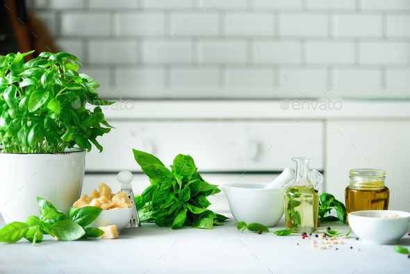 Pot of fresh basil, oil, pine nuts, with white kitchen background. Copy space. Ingredients for - Stock Photo - Images