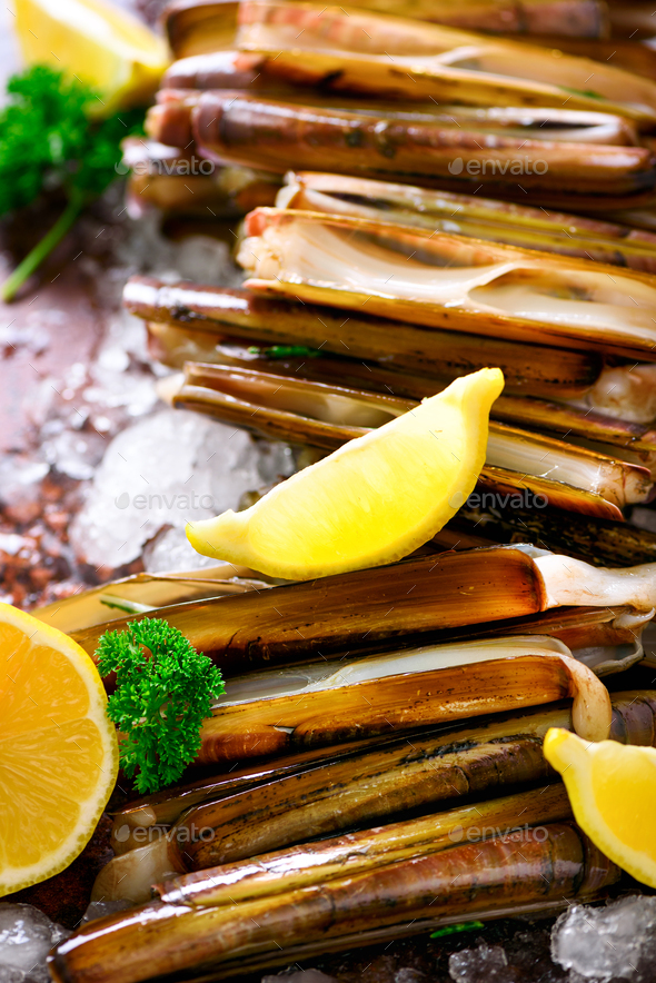 Bundle, bunch of fresh razor clams on ice, dark concrete background, lemon, herbs. Copy space, top - Stock Photo - Images