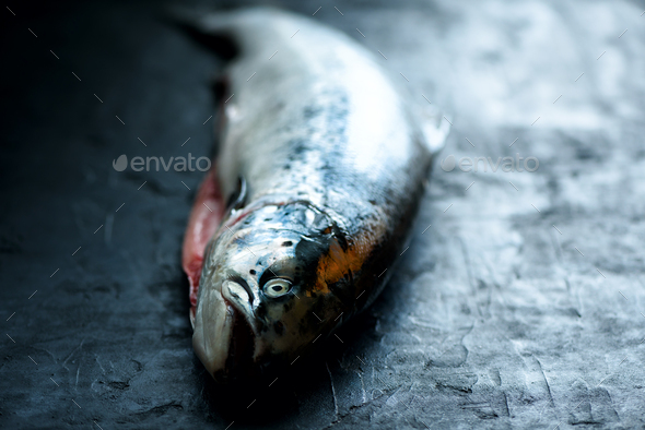 Fresh salmon fish dark black concrete background prepared for filing. Copy space, top view - Stock Photo - Images