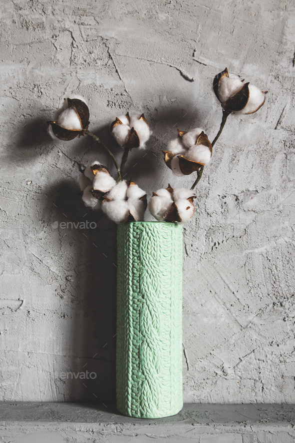 branches of cotton in a vase on a background - Stock Photo - Images