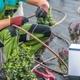Building Irrigation System - PhotoDune Item for Sale