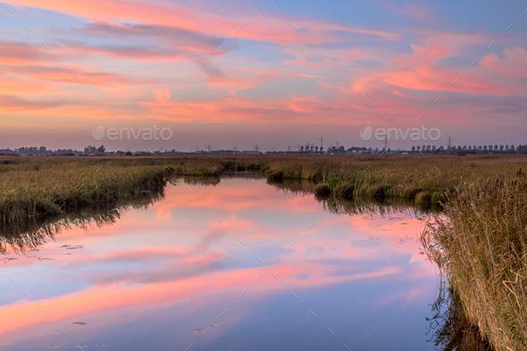 River through marshland - Stock Photo - Images