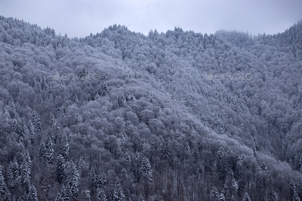 Snowy mountains - Stock Photo - Images