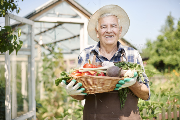 Who wanna try fresh vegetables from my garden? - Stock Photo - Images
