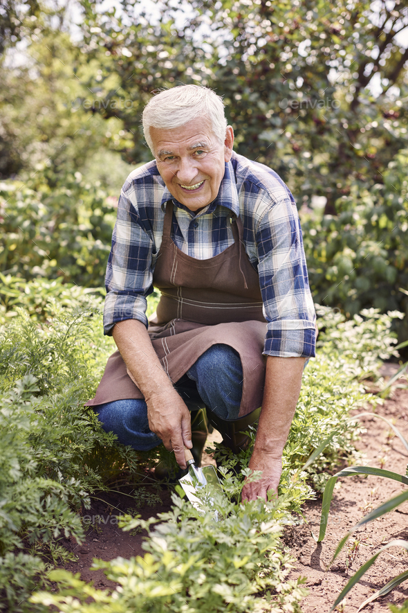 It's good to have access to organic vegetables - Stock Photo - Images