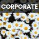 Corporate Rock Inspiration