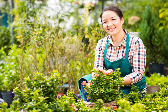 Gardening woman - Stock Photo - Images