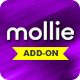 Free Download Mollie Payment Gateway for GoStock Nulled