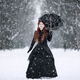 Woman in Victorian Dress in a Winter Park - PhotoDune Item for Sale