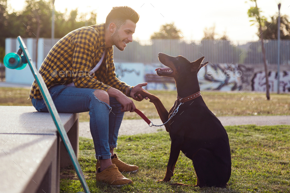Handsome young man playing with his dog in the park. - Stock Photo - Images