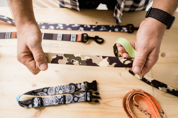 Overview of hands of craftsman holding one of creative pet collar workpieces - Stock Photo - Images