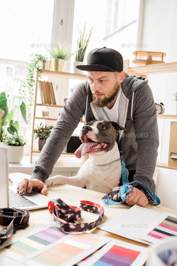 Young creative male designer and his pet working by table in front of laptop - Stock Photo - Images