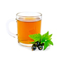 Tea with black currant in glass mug - PhotoDune Item for Sale