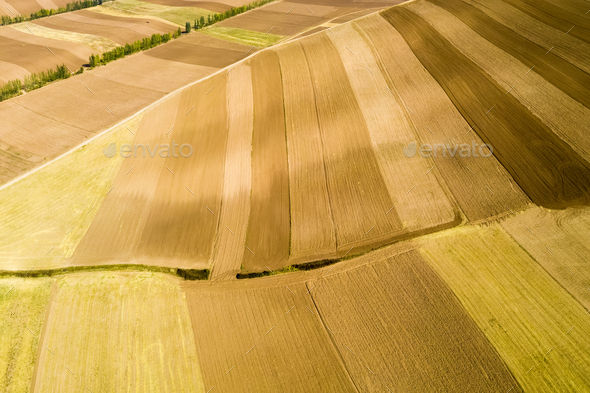 farmland texture background in autumn - Stock Photo - Images