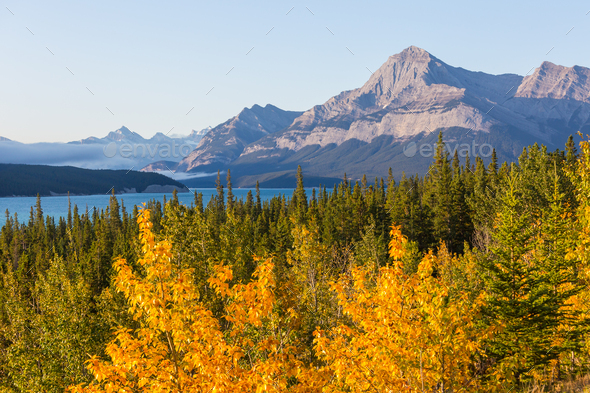 Autumn in Canada - Stock Photo - Images