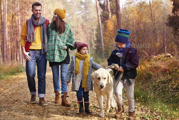 Walking with all family in autumn season - Stock Photo - Images