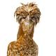 Tolbunt Polish chicken against white background - PhotoDune Item for Sale