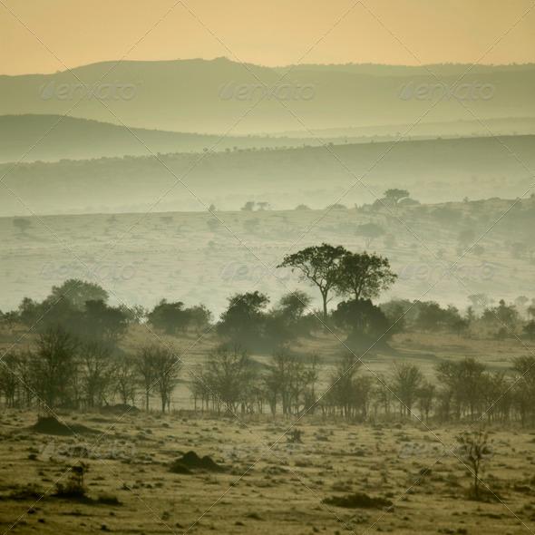 Africa landscape Serengeti National Park, Serengeti, Tanzania - Stock Photo - Images