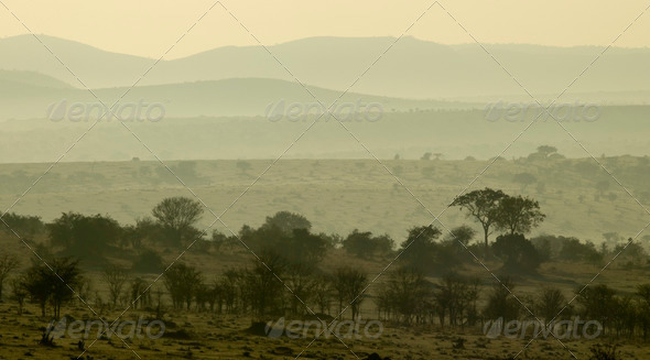 Scenic view of the Serengeti, Tanzania, Africa - Stock Photo - Images