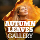 Autumn Leaves Photo Video Gallery - VideoHive Item for Sale