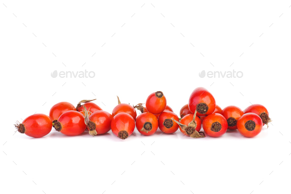 Fresh red hips berries - Stock Photo - Images