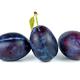 Blue plums - PhotoDune Item for Sale