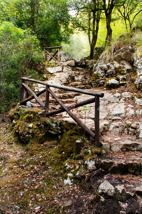 Stone stairs in the natural reserve of Morigerati - Stock Photo - Images