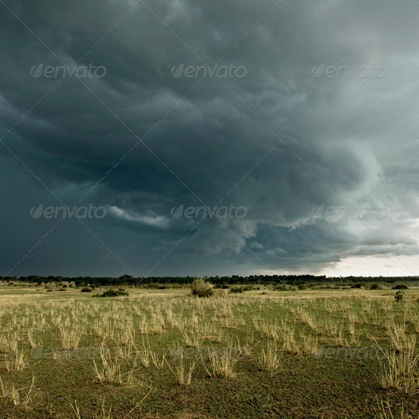 Rain cloud over Africa landscape, Serengeti National Park, Serengeti, Tanzania - Stock Photo - Images