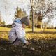 Little child, baby girl playing with fall leaves on the ground. The Fall season. - PhotoDune Item for Sale