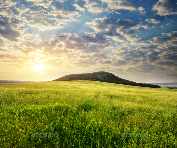 Beautiful landscape spring meadow - Stock Photo - Images