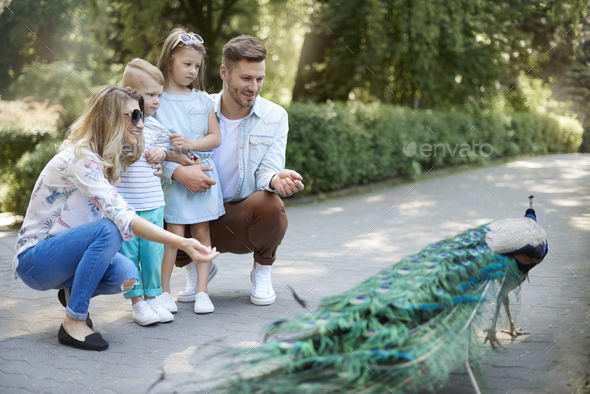 Family spending day at the zoo - Stock Photo - Images
