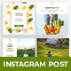 Free Download Natural Instagram Social Media Pack Nulled