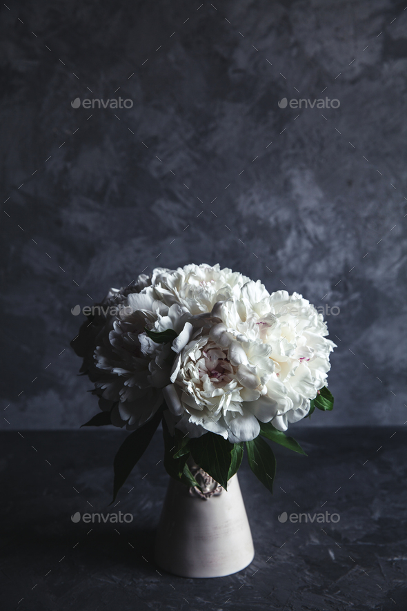 Beautiful peonies on grey concrete background. Wedding, birthday, valentine's day, gift - Stock Photo - Images