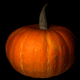 Pumpkin on black background - PhotoDune Item for Sale