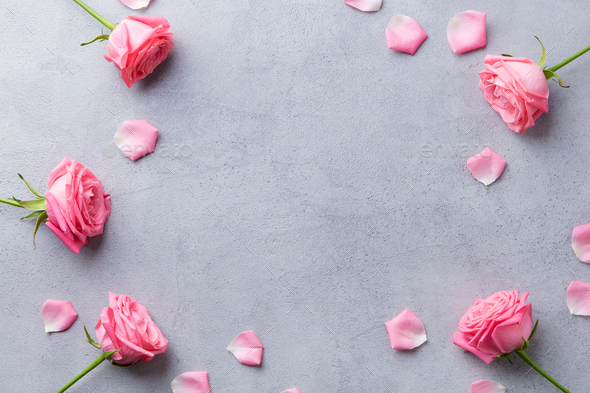 Roses Heads and Petals Frame on Grey Stone Background. Top View. Copy Space. - Stock Photo - Images