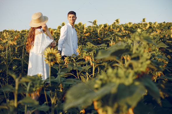 Beautiful and stylish couple in a field wirh sunflowers - Stock Photo - Images