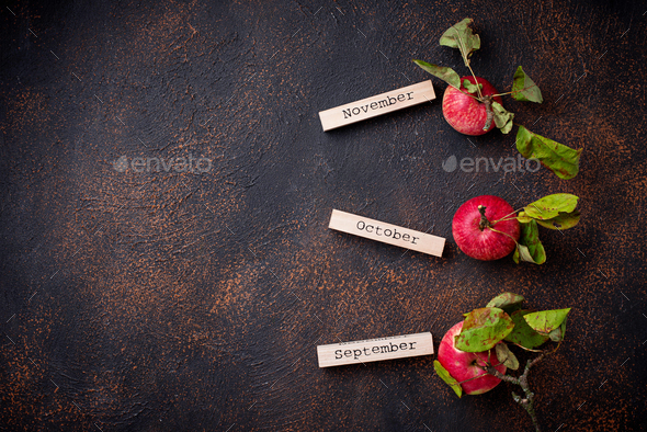 Creative autumn background with apples - Stock Photo - Images