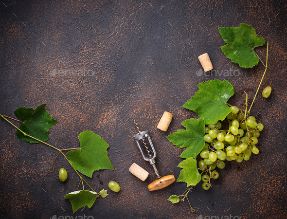 Grape and vintage corkscrew - Stock Photo - Images