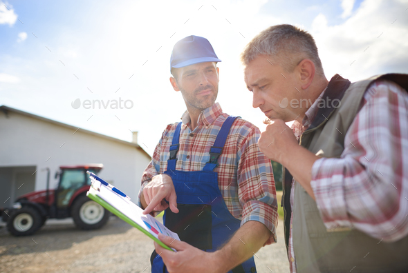 Business partners on the farm - Stock Photo - Images
