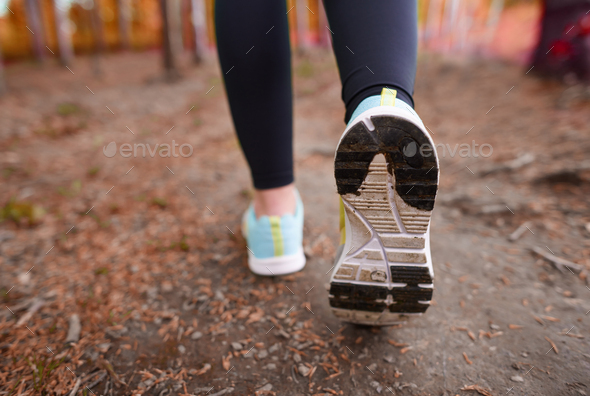 Rear view of sports shoe - Stock Photo - Images