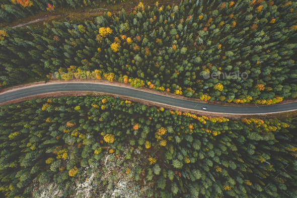 Aerial view of fall landscape, road in beautiful autumn forest - Stock Photo - Images