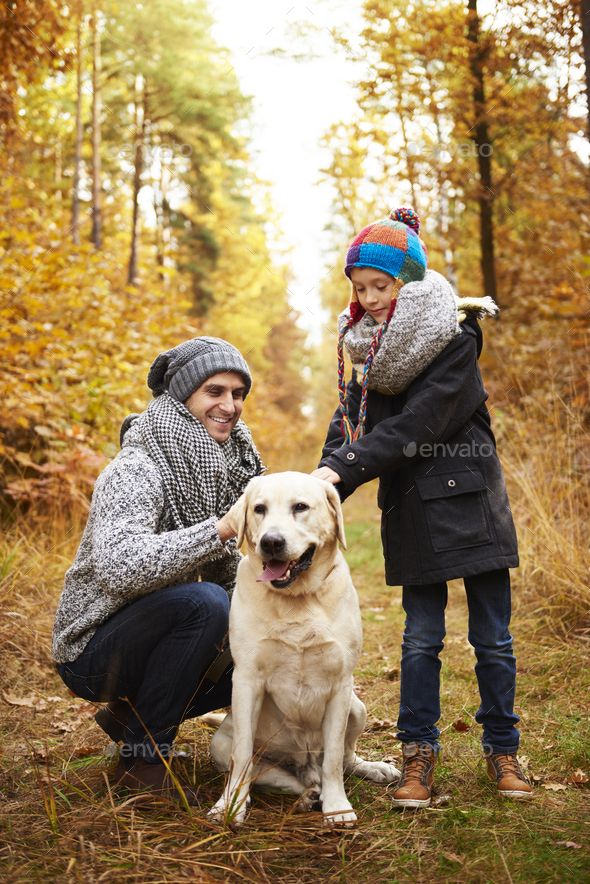 Father and son taking care about their pet - Stock Photo - Images