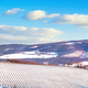 Vineyards rows covered by snow in winter. Chianti, Siena, Italy - PhotoDune Item for Sale