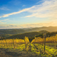 Radda in Chianti vineyard and panorama at sunset. Tuscany, Italy - PhotoDune Item for Sale