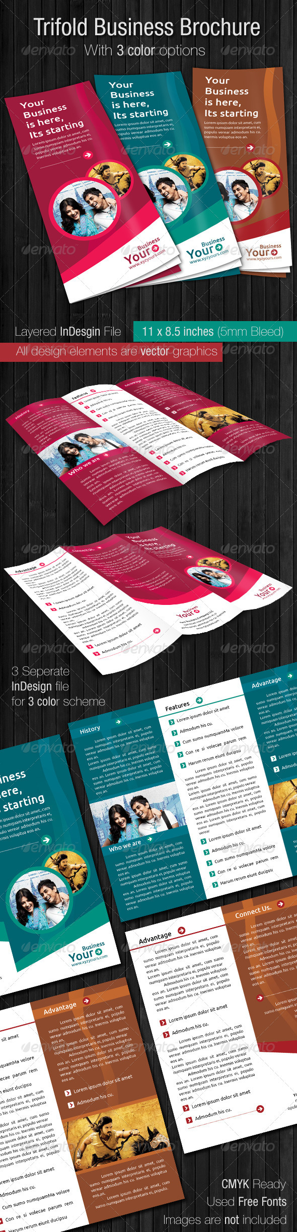 Trifold Business Brochure - Informational Brochures