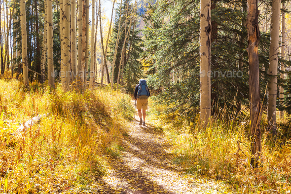 Hike in autumn season - Stock Photo - Images